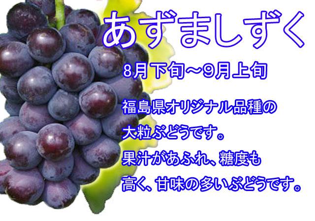 ぶどう狩り,あずましずく,福島県オリジナル品種の大粒ぶどうです。果汁があふれ、糖度も高く、甘味の多いぶどうです。