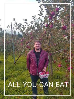 りんご狩り。マルハラ果樹園のりんごをご堪能ください。