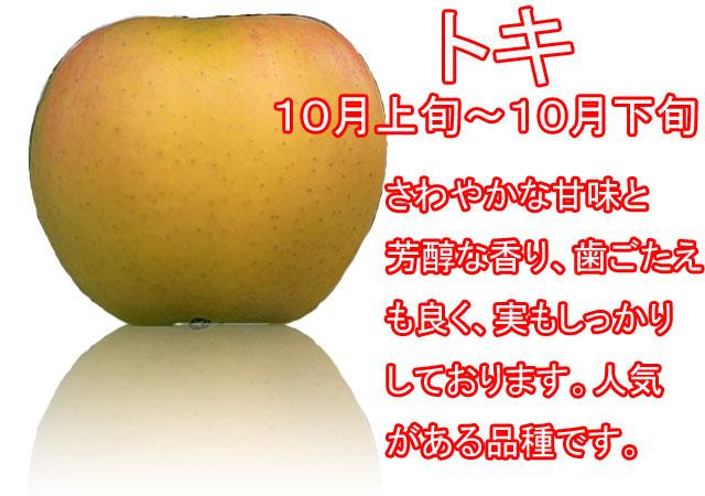 りんごの品種,トキ。さわやかな甘味と芳醇な香り、歯ごたえも良く、実もしっかりしております。人気がある品種です。