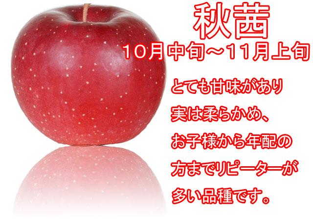 りんごの品種,秋茜。とても甘味があり、実は柔らかみ、お子様から年配の方までリピーターが多い品種です。
